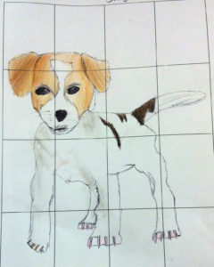 Year5 grid drawing of puppy 50 mins colour pencil
