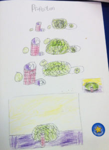 Brilliant sketchbook example demonstrating Yr 4 pupil attempting to draw objects overlapping.